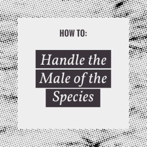 Interactive Fiction - How to: Handle a Male of the Species